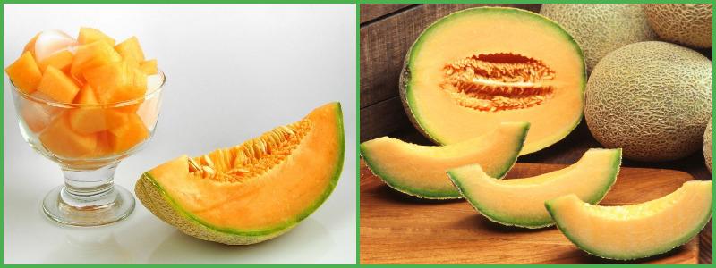 Дыни Для Похудения. Дынная диета для похудения: вред и польза дыни, полезные вещества, эффективность