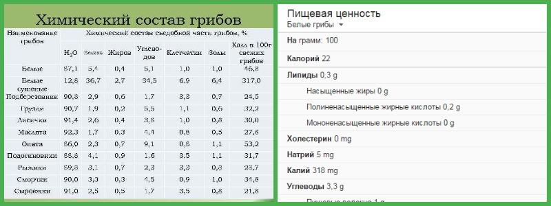Химический состав грибов